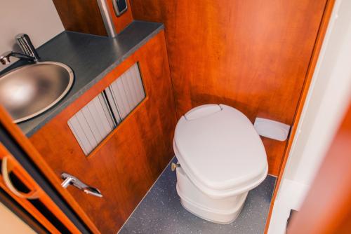 luxurious rv toilet