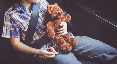 Toys Keep Young Children From Being Too Fussy Inside Your Pickup Truck