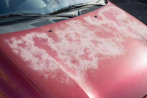 Fading Happens To Car Paint Over Time